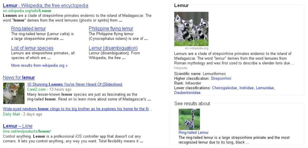 """Knowledge Graph im Einsatz für das Suchwort """"Lemur"""""""