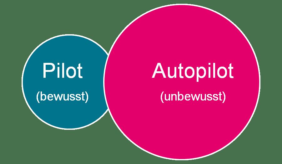 Der Pilot & Autopilot
